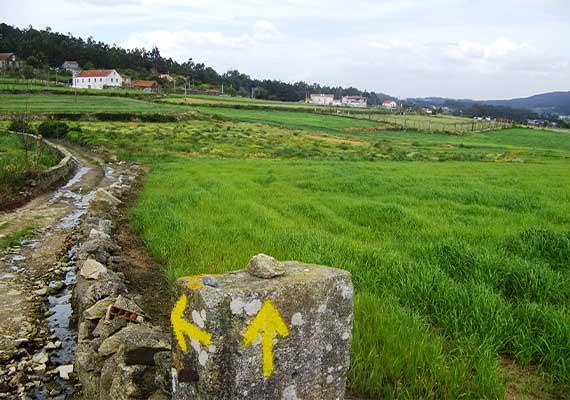 Day 10 : Vigo - Redondela (16 km ~ 4 hours)